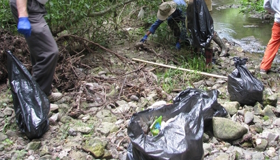 buena Creek cleanup