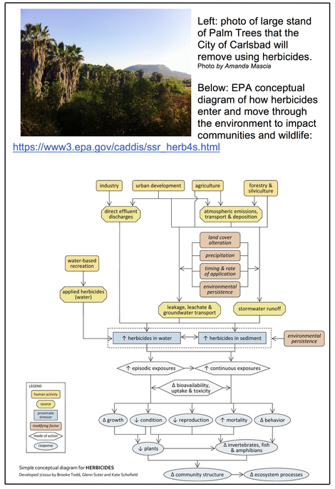 how herbicides impact the environment 3