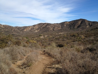 Southern_California_Chaparral